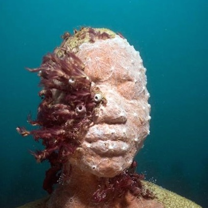 photograph of sculpture from Jason deCaires Taylor, Vicissitudes, Depth 5m, Grenada, West Indies